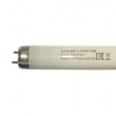 Лампа ЛД-58 OSRAM L58W/765